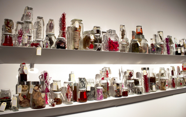 Specimen, Mai Nguyen-Long 2013, used jars, found & mixed media objects, organic material, liquid, labels, dimensions variable