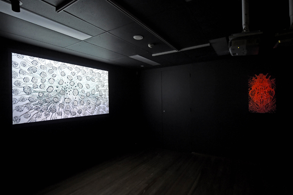 Mai Nguyen-Long New Media Work at Mosman Art Gallery, photo: Adam Hollingworth